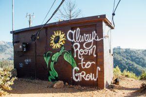 Always room to grow